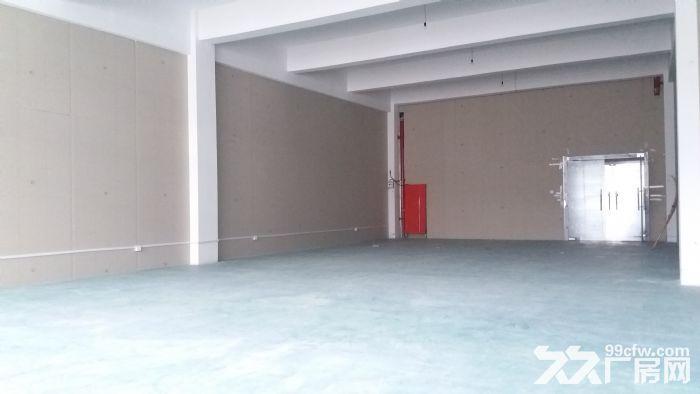 直招500平办公厂房仓库,环境好位置优-图(1)