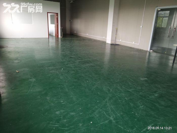 直招500平办公厂房仓库,环境好位置优-图(3)