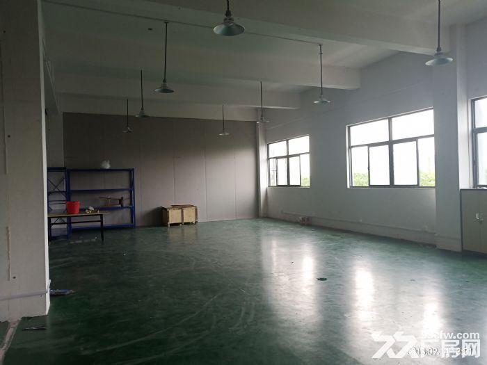 直招500平办公厂房仓库,环境好位置优-图(4)