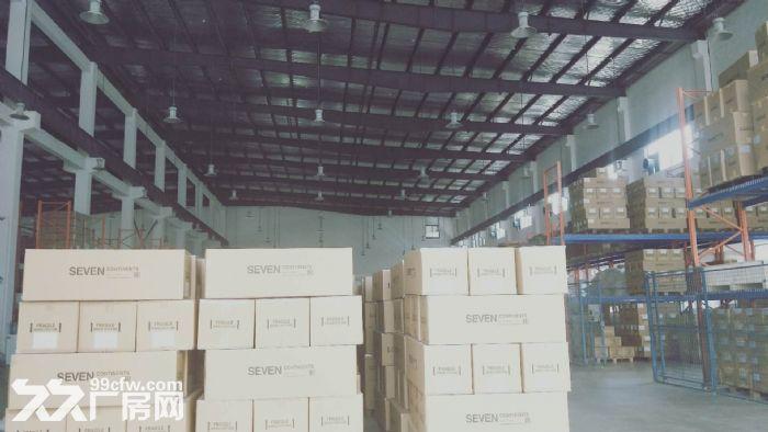胜浦单层独栋3200平厂房出租层高9米-图(5)