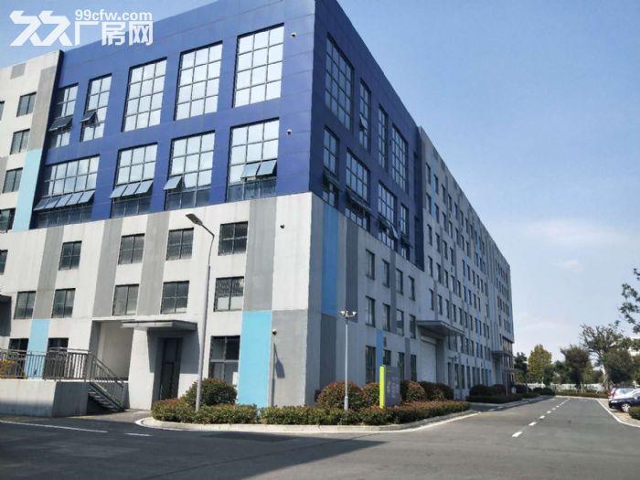 石林路2400平标准厂房出租环境好+位置好-图(3)