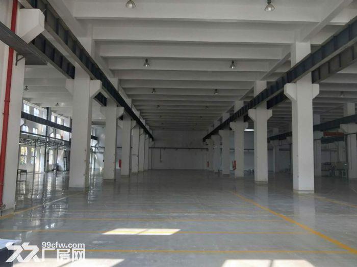 石林路2400平标准厂房出租环境好+位置好-图(4)