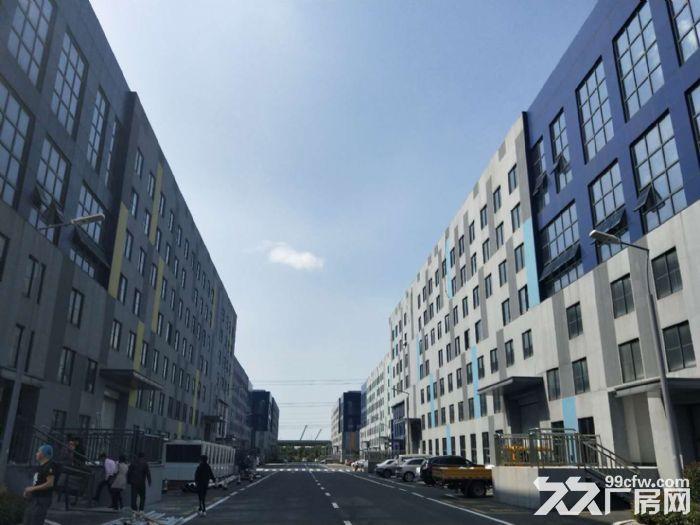 石林路2400平标准厂房出租环境好+位置好-图(5)