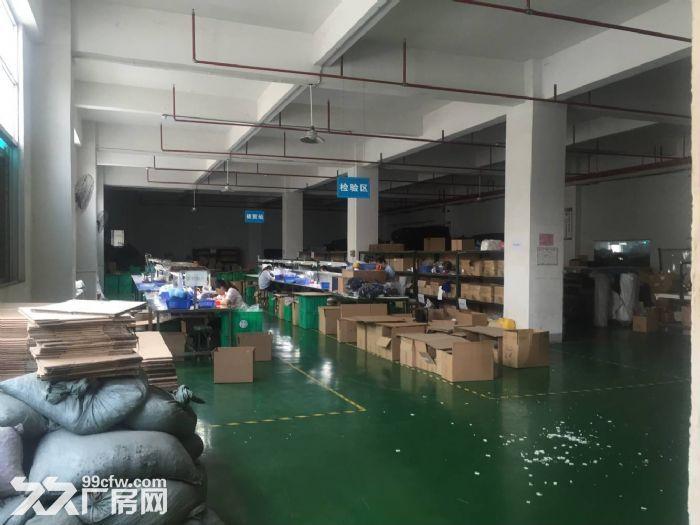 凤岗黄洞独门独院厂房5100平方招租,精装修形象好-图(4)