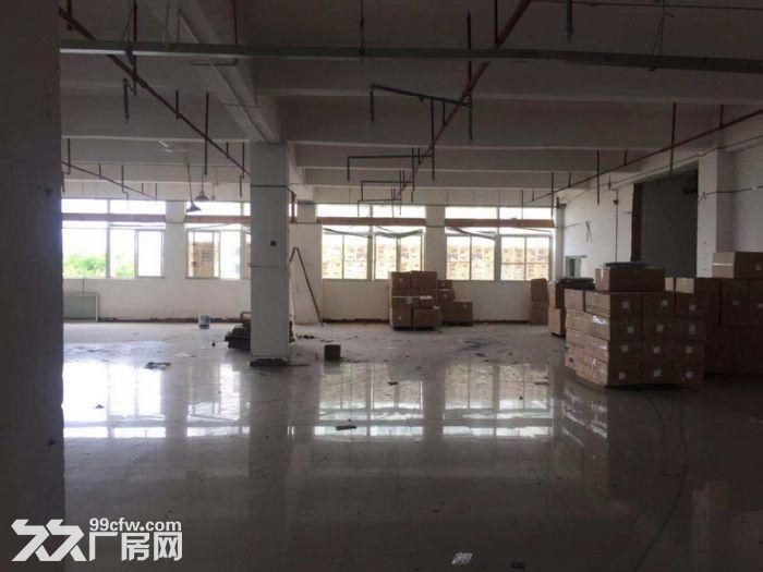 厦门市翔安区火炬二期通用厂房出租-图(2)