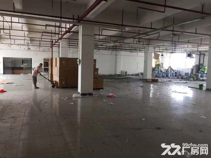 厦门市翔安区火炬二期通用厂房出租-图(3)