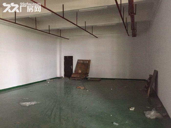 厦门市翔安区火炬二期通用厂房出租-图(5)