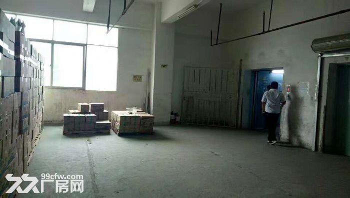 清溪带卸货平台两个3吨电梯消防喷淋二楼厂房出租-图(3)