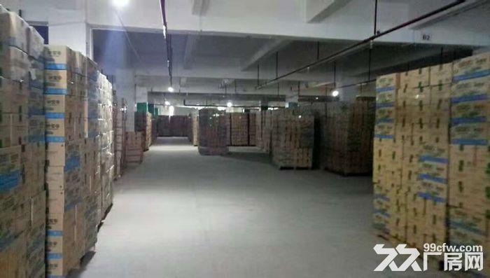 清溪带卸货平台两个3吨电梯消防喷淋二楼厂房出租-图(4)