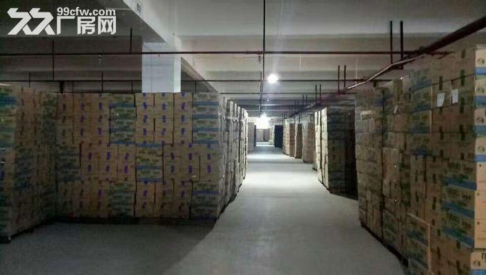 清溪带卸货平台两个3吨电梯消防喷淋二楼厂房出租-图(5)