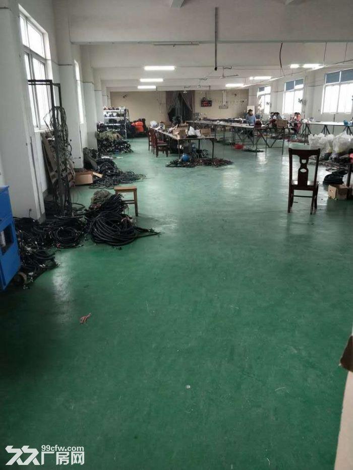 阳澄湖新出一手房东园区独栋2500㎡产证齐全整租优先-图(4)