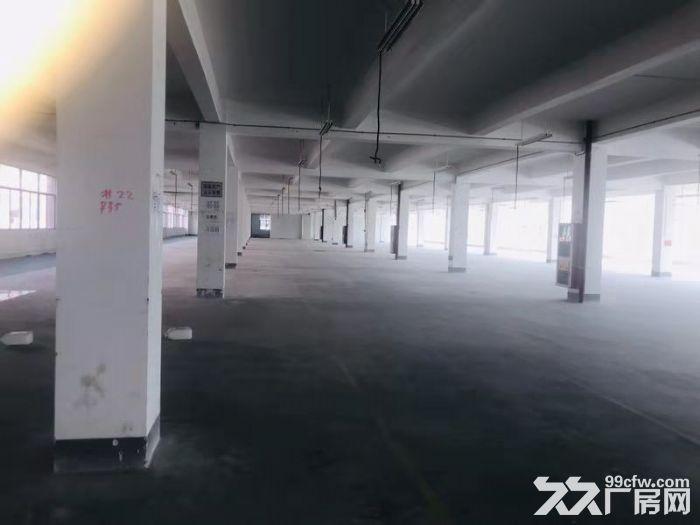 海沧中仓工业园标准厂房4000平米出租1楼1500平-图(3)