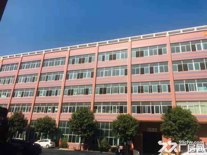 海沧中仓工业园标准厂房4000平米出租1楼1500平-图(1)