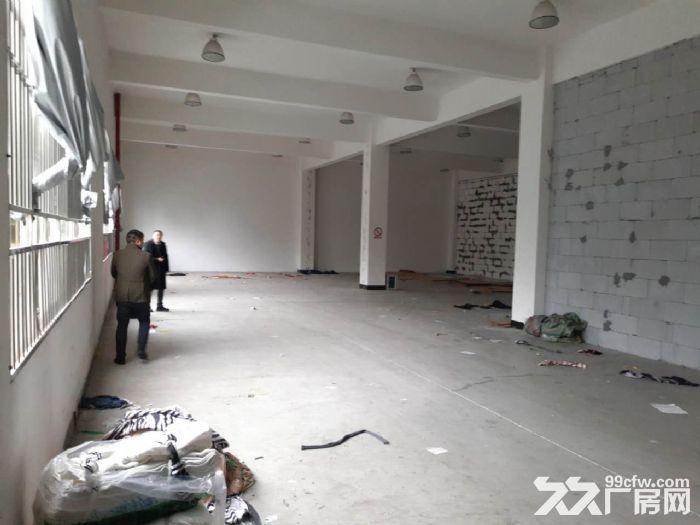 萧山开发区370平可做淘宝仓库行业不限无污染噪音皆可-图(5)
