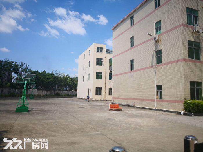 石岩西丽阳光工业区楼上1500平方厂房出租带精装修-图(1)