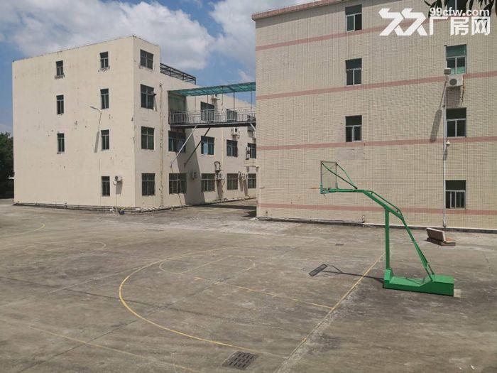 石岩西丽阳光工业区楼上1500平方厂房出租带精装修-图(2)