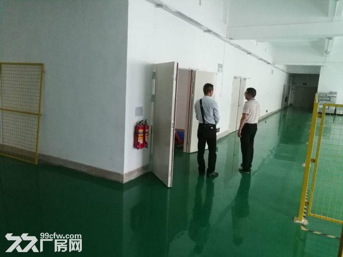 石岩西丽阳光工业区楼上1500平方厂房出租带精装修-图(3)