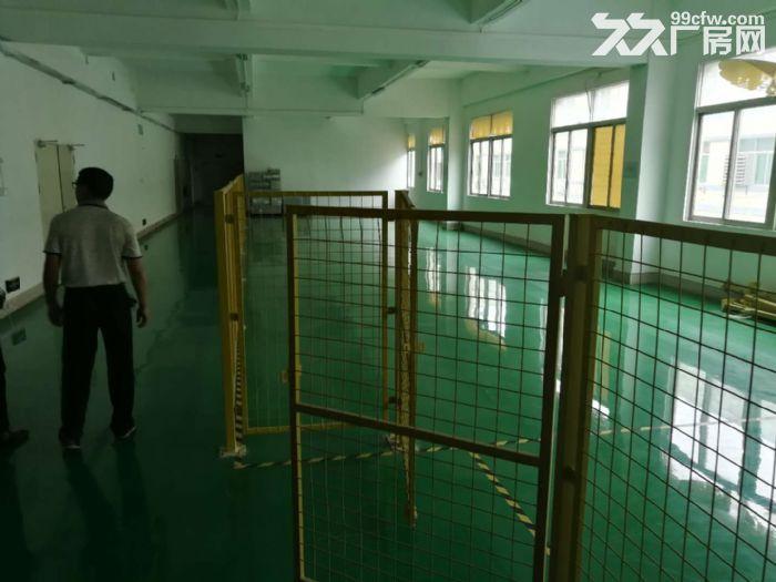 石岩西丽阳光工业区楼上1500平方厂房出租带精装修-图(4)