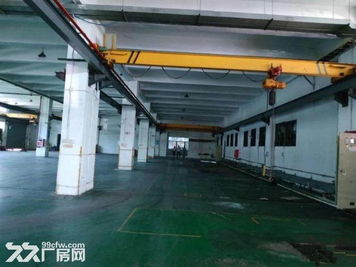 石岩龙大高速出口花园式一楼2800厂房可分租-图(3)