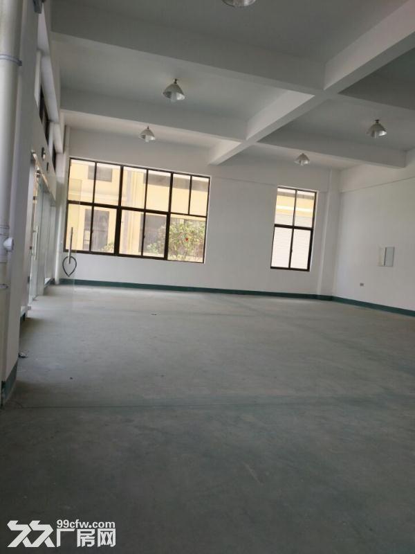 松江4700平带装修独栋双层厂房出租底楼层高8米适合机械设备可环评注册-图(1)