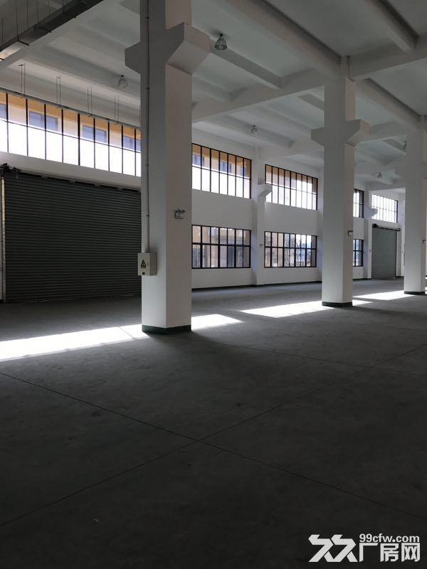 松江4700平带装修独栋双层厂房出租底楼层高8米适合机械设备可环评注册-图(5)