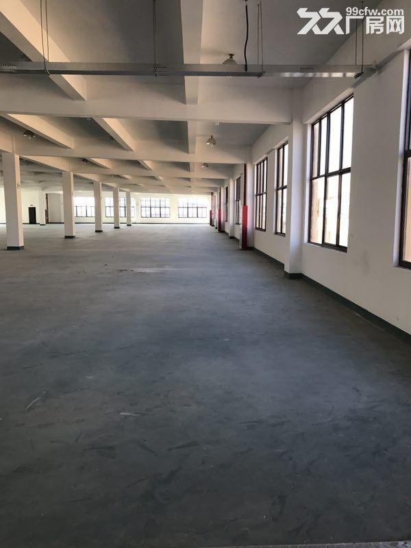 松江4700平带装修独栋双层厂房出租底楼层高8米适合机械设备可环评注册-图(6)