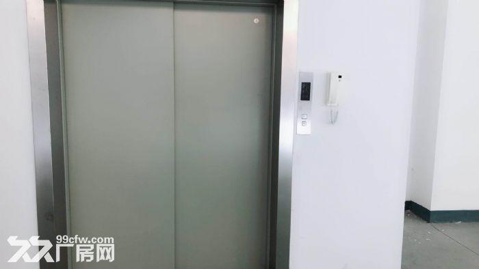 松江4700平带装修独栋双层厂房出租底楼层高8米适合机械设备可环评注册-图(3)