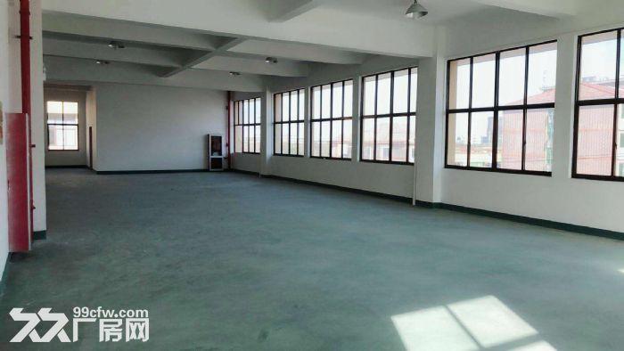 松江4700平带装修独栋双层厂房出租底楼层高8米适合机械设备可环评注册-图(7)