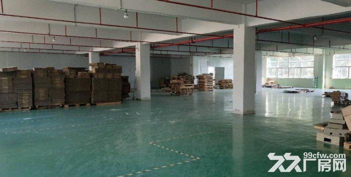 南联新出,楼上带装修厂房1600平米-图(3)