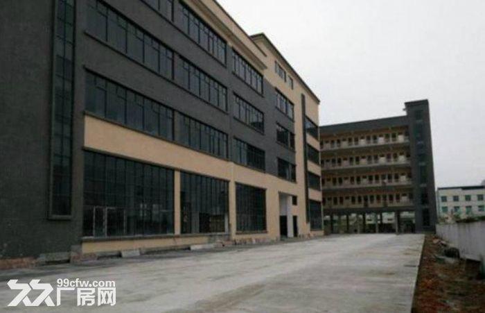 南联新出,楼上带装修厂房1600平米-图(6)