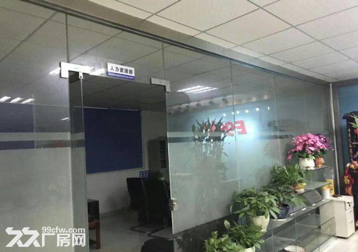 龙岗宝龙高新产业园35000平米带红本独院厂房出租-图(2)