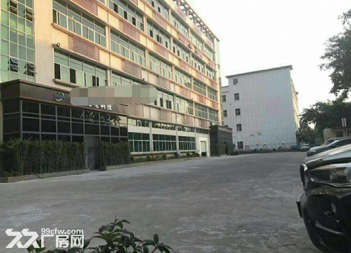 龙岗宝龙高新产业园35000平米带红本独院厂房出租-图(3)