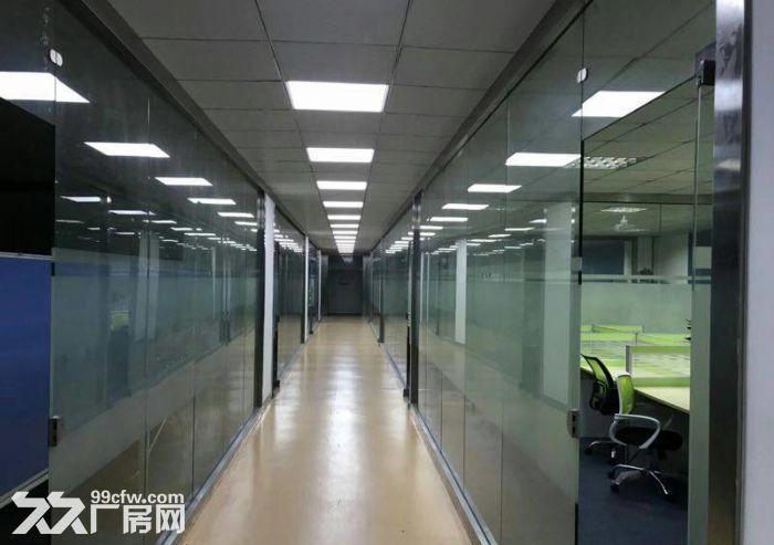 龙岗宝龙高新产业园35000平米带红本独院厂房出租-图(4)