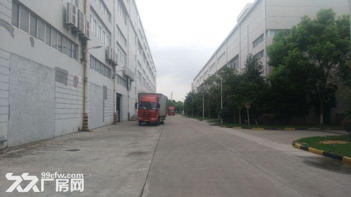 川沙路可用办公生产轻加/工组/装临近地铁展示均可-图(4)