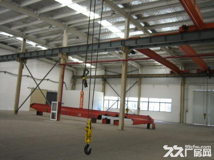 曹路独栋单层3007平厂房出租生产环评航空配套-图(2)