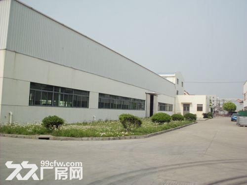 曹路独栋单层3007平厂房出租生产环评航空配套-图(3)