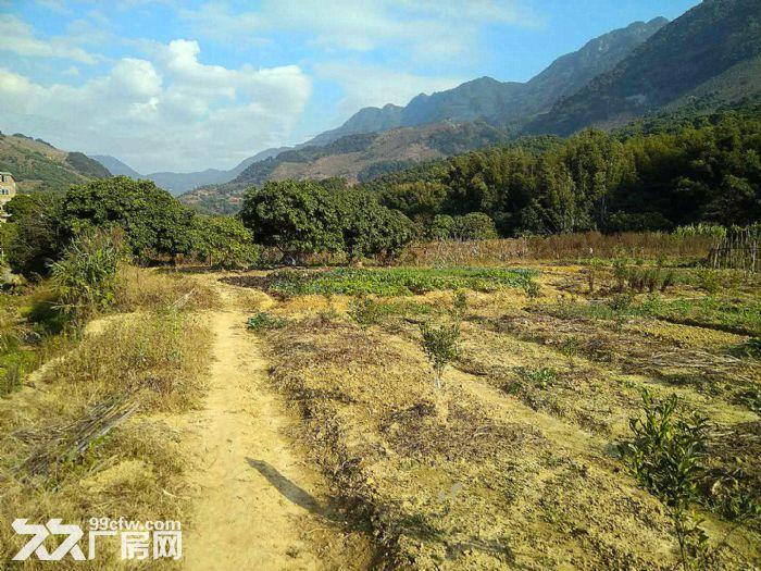 从化区温泉镇石门旅游区附近密石村30亩平地永久转让-图(1)