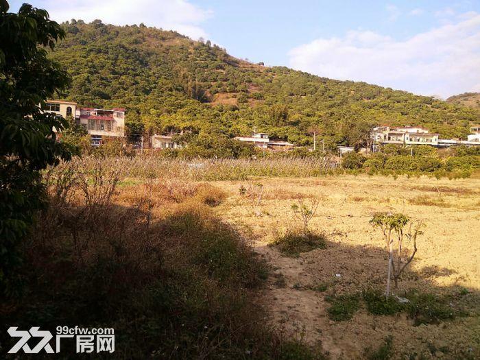 从化区温泉镇石门旅游区附近密石村30亩平地永久转让-图(3)