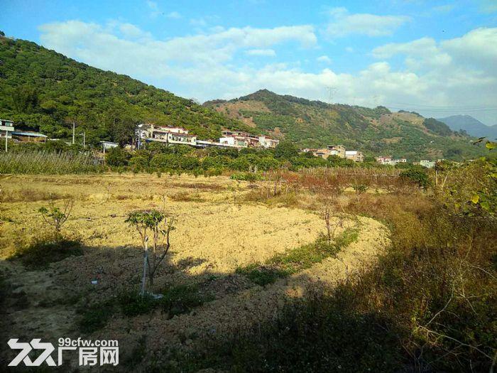 从化区温泉镇石门旅游区附近密石村30亩平地永久转让-图(4)