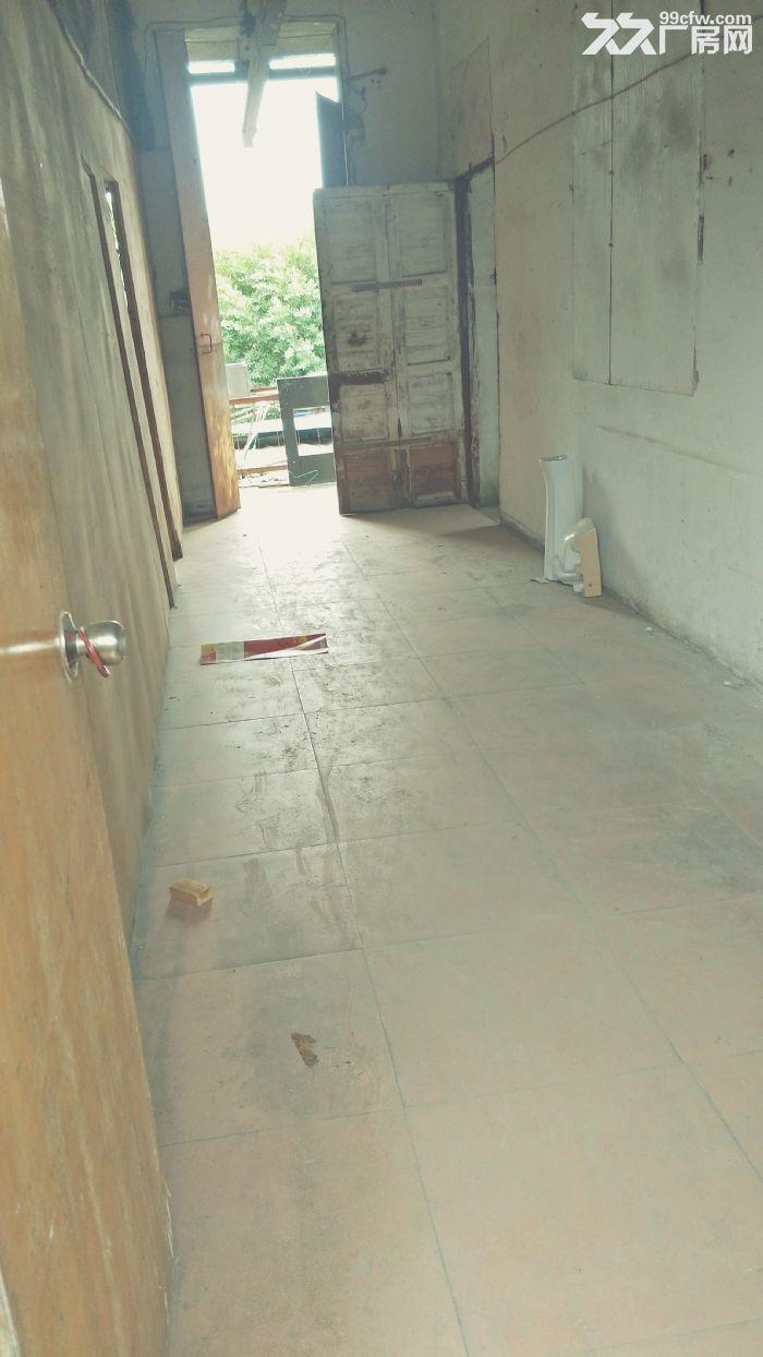 一楼还房子,一楼月每平方30元有三相电大门保安-图(2)