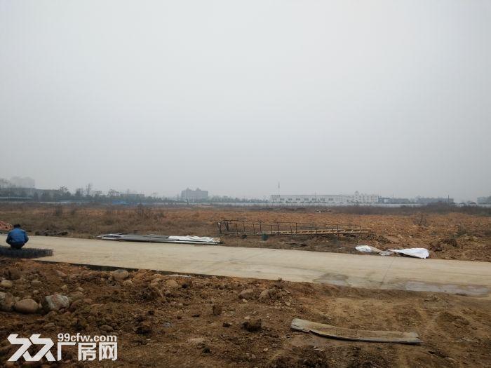 (土地出售)蒲江寿安新城产业园80000平土地出售享受政府补贴-图(1)