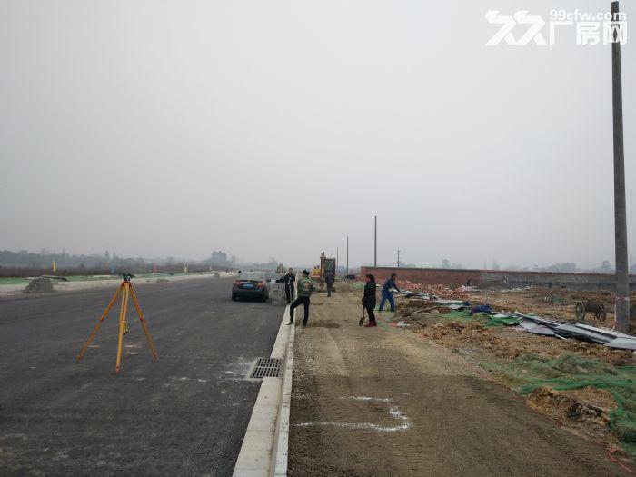 (土地出售)蒲江寿安新城产业园80000平土地出售享受政府补贴-图(3)