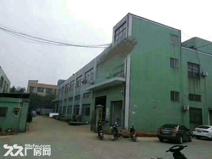 松岗独门独院厂房二层4800平方米-图(1)