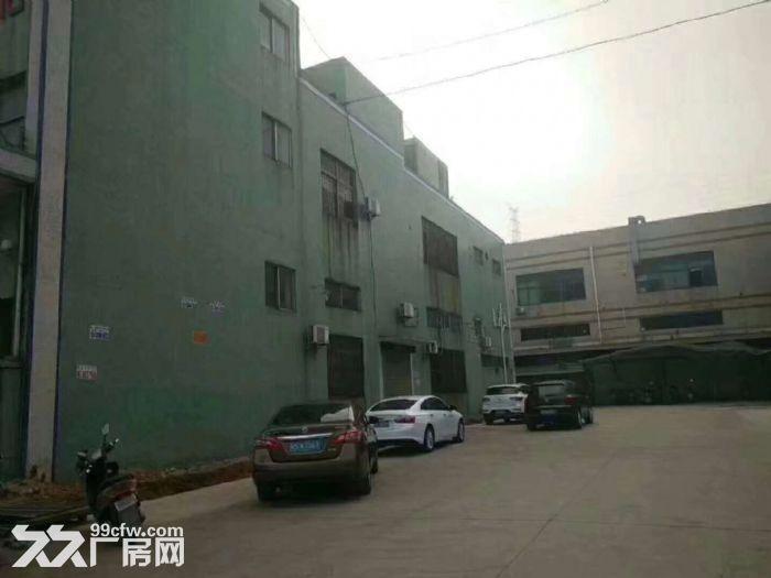 松岗独门独院厂房二层4800平方米-图(4)