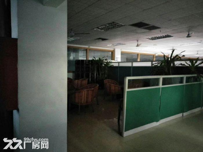 松岗独门独院厂房二层4800平方米-图(6)