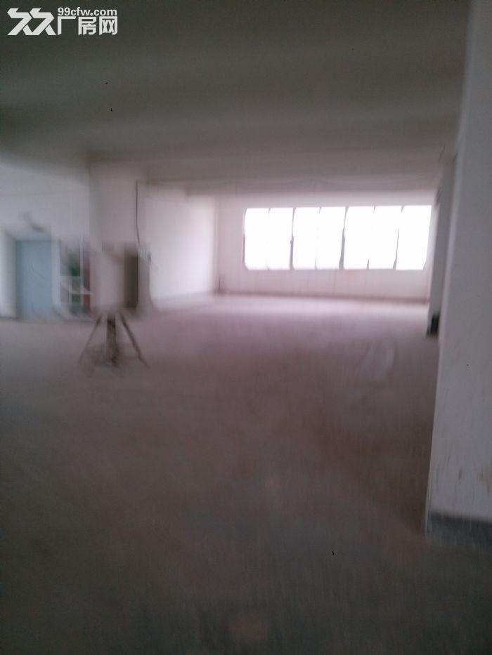 标准厂房3500出租有1楼和2楼-图(1)