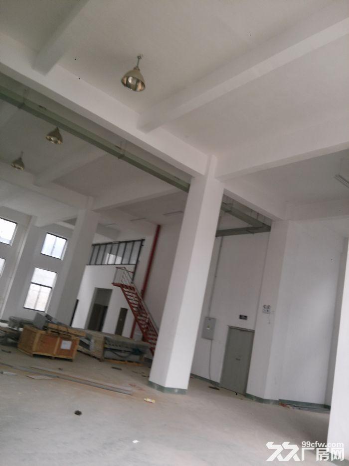 标准厂房3500出租有1楼和2楼-图(3)