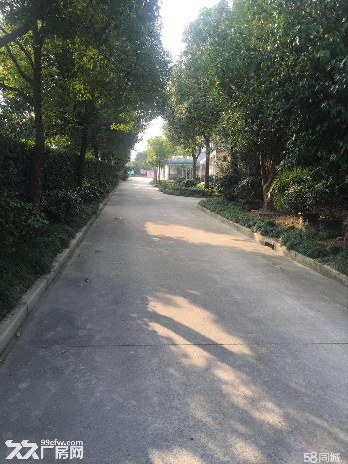 出租彭浦地区仓库500平方米左右环境优美独门独院-图(1)