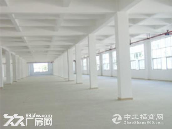东莞市麻涌新出独门独院9500平方1栋3层楼房出租-图(2)