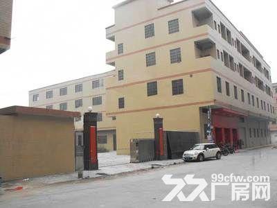 东莞市麻涌新出独门独院9500平方1栋3层楼房出租-图(1)